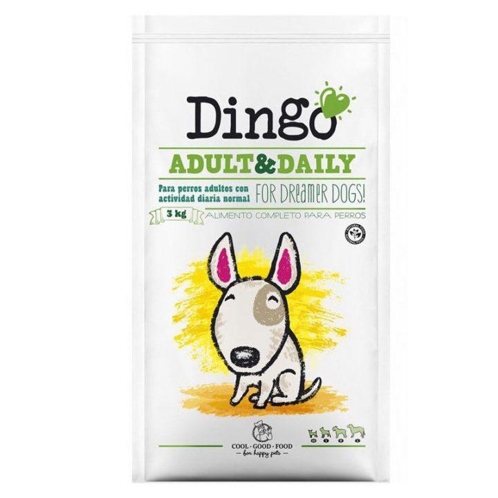 dingonatura_dingo_adult_daily