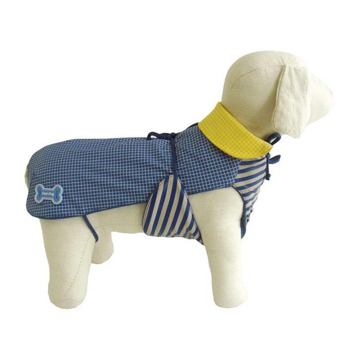 abrigo-new-orleans-fuss-dog