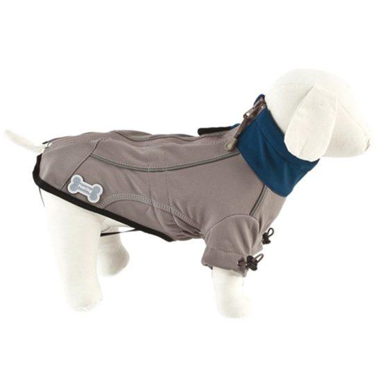 abrigo-toronto-technik-fuss-dog