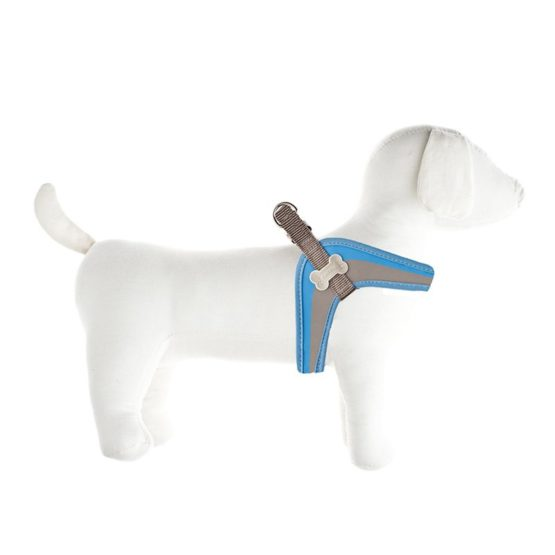 arnes-coco-fuss-dog-azul