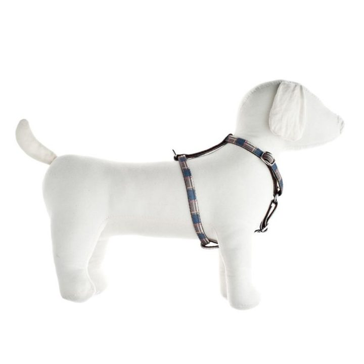 arnes-escoces-ajustable-fuss-dog