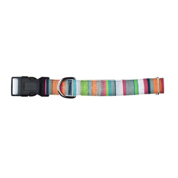 collar-ajustable-fuss-dog-rainbow