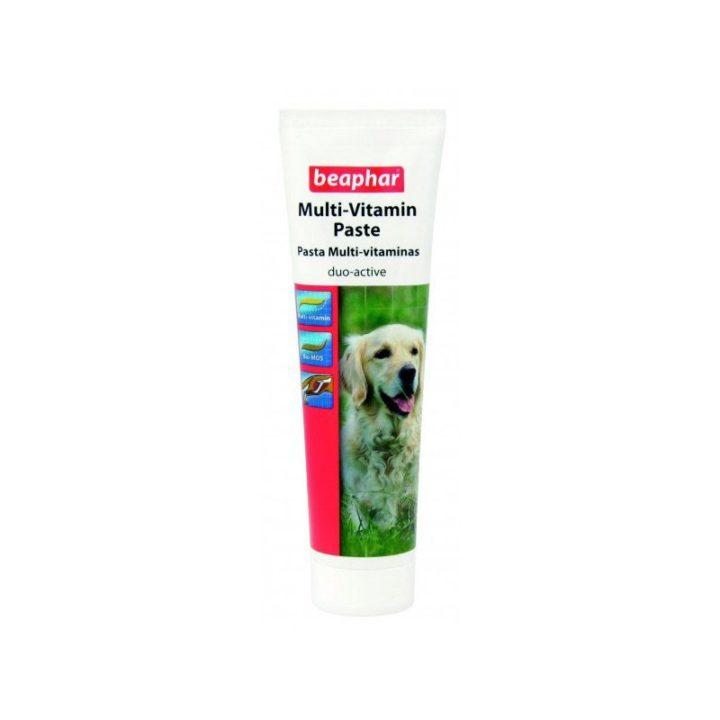 pasta-multi-vitaminas-perro-beaphar