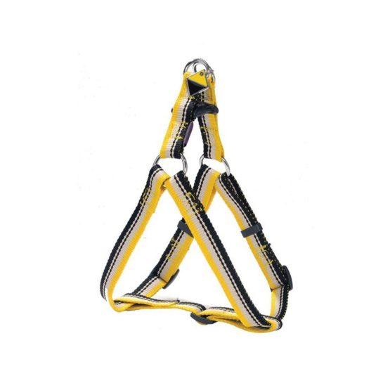 bobby-arnes-surf-nylon-amarillo
