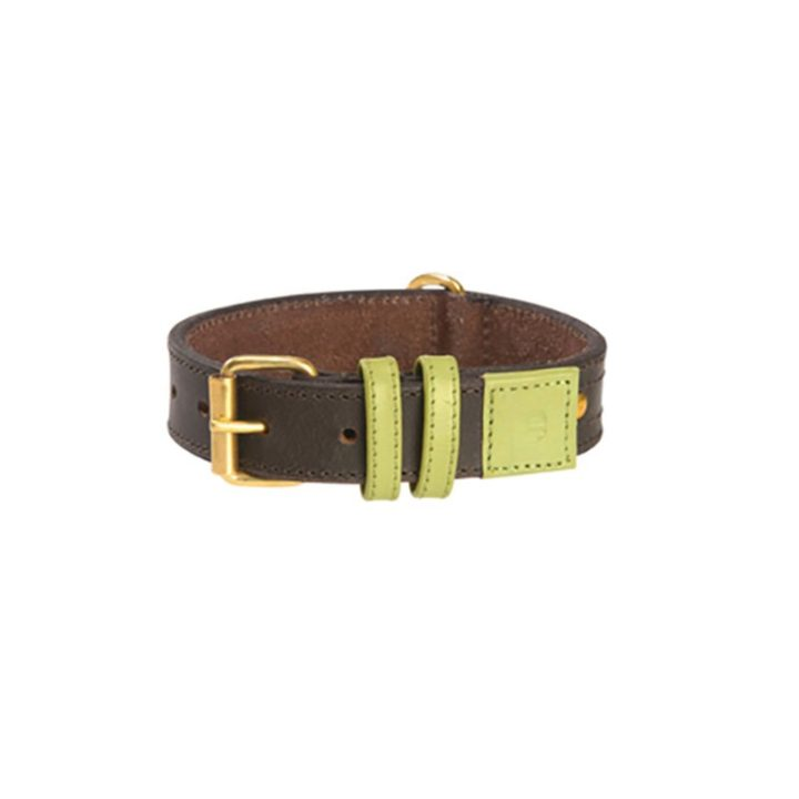 bobby-collar-urban-dog-piel-verde