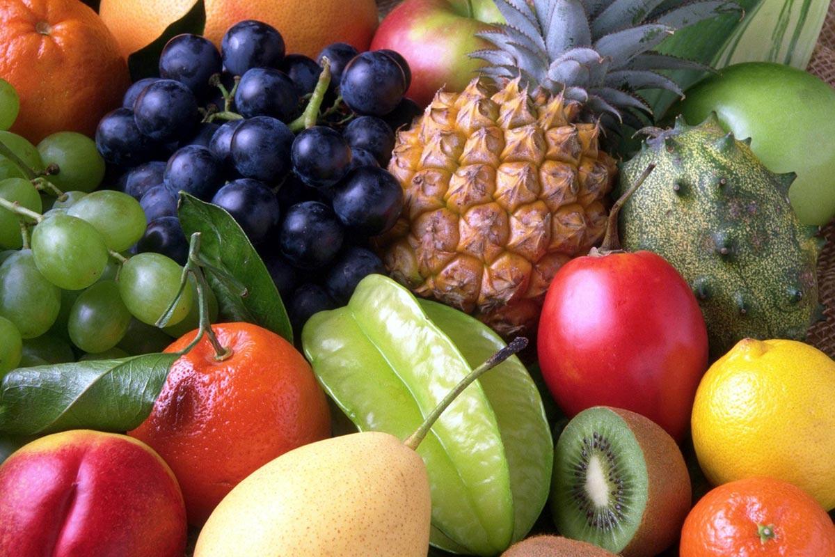 frutas-perro